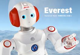 类人机器人