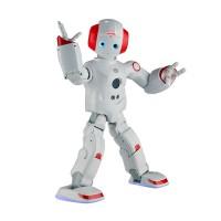 珠穆朗玛 5号 类人机器人